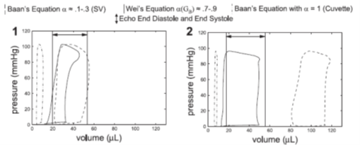 Baans and Weis equations for PV Loops compared to Echo End Diastole and End Systole