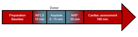 Donor cardiac function for transplant