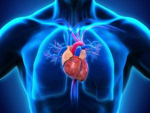 cardiac overload hemodialysis