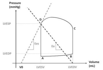 Herpain PV loop with parameters