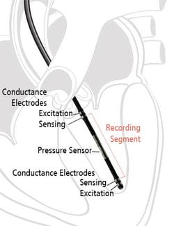 PVL Catheter small