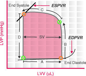 PV_loop diagram