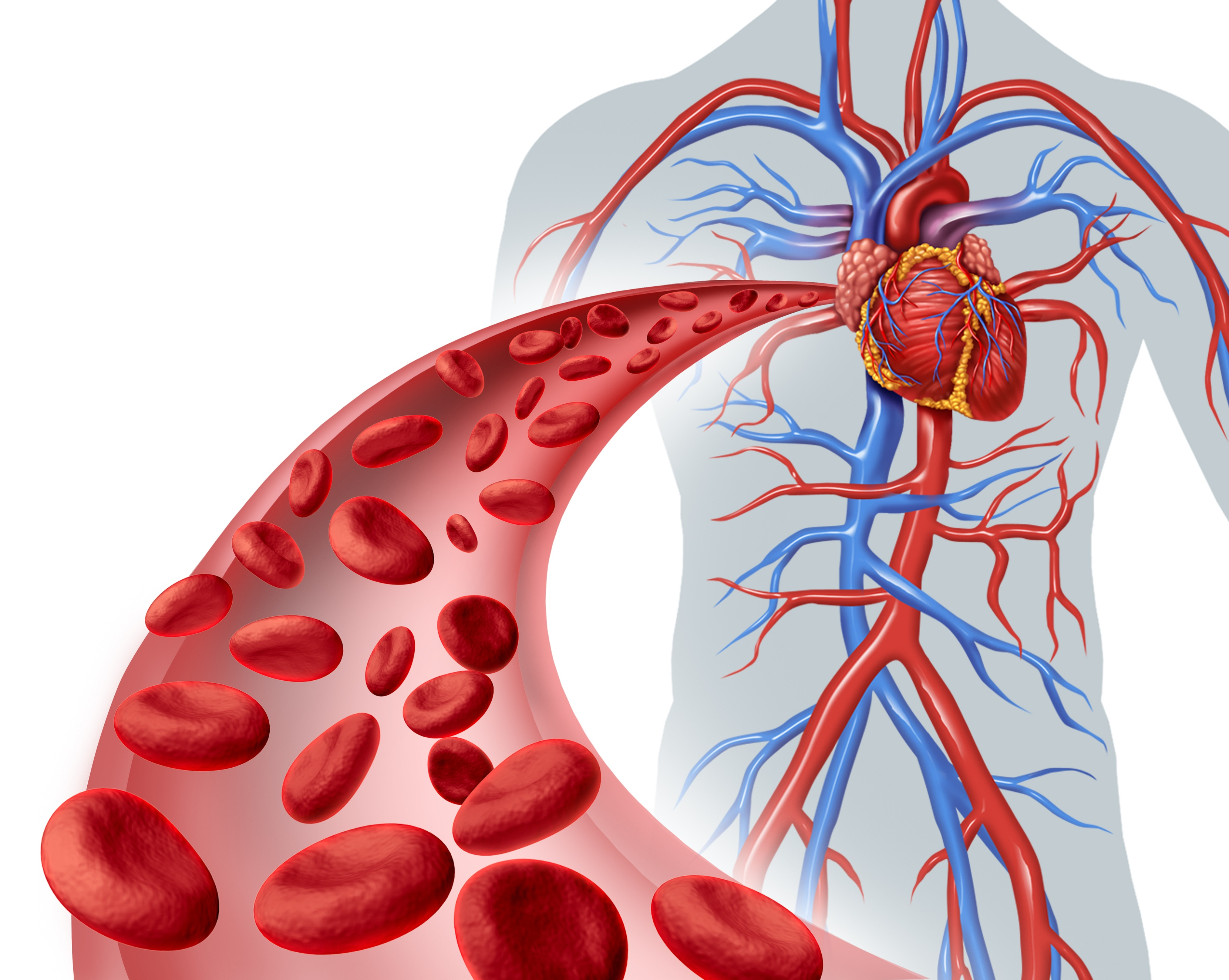 vascular-access-blood-flow