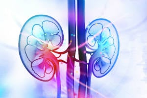 Kidney Care News to Know